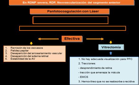 Fig. 6. Indicaciones de la panfotocoagulación y vitrectomía